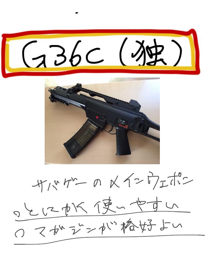 g36cever